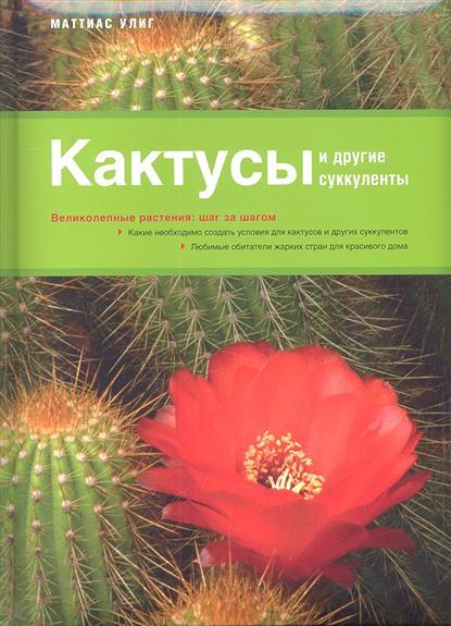 Кактусы и другие суккуленты. Великолепные растения: шаг за шагом. Какие необходимо создать условия для кактусов и других суккулентов. Любимые обитатели жарких стран для красивого дома
