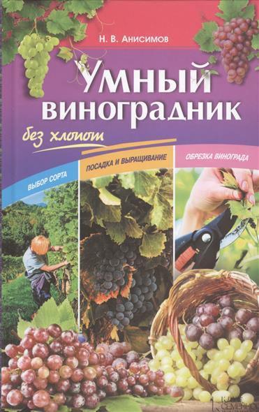 Умный виноград без хлопот
