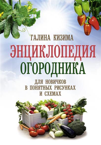 Энциклопедия огородника для новичков в понятных рисунках и схемах