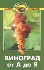 Виноград от А до Я