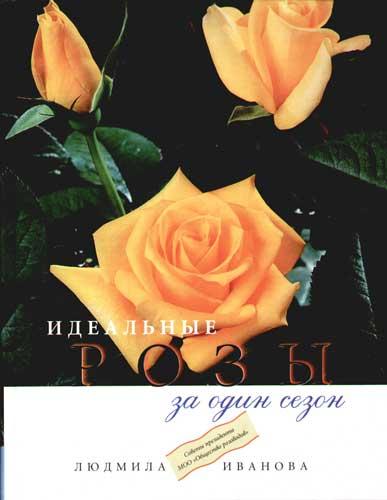 Идеальные розы за один сезон