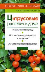 Цитрусовые растения в доме Советы профессионалов