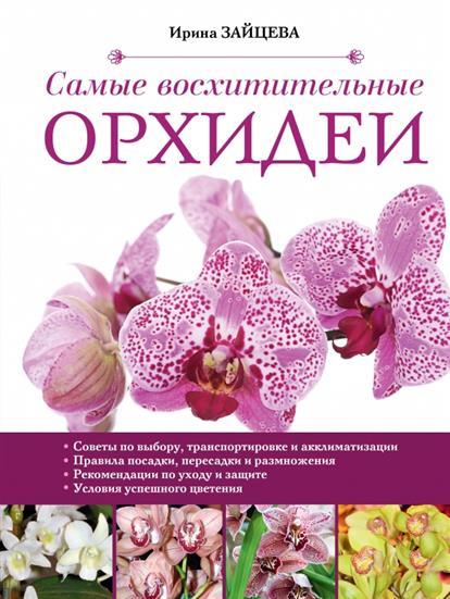 Самые восхитительные орхидеи