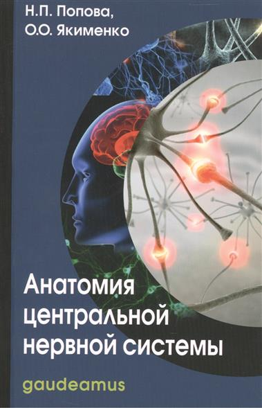 Анатомия центр. нервной системы