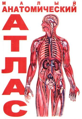 Малый анатомический атлас