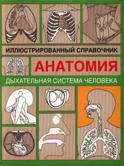 Дыхательная система человека Илл. справочник