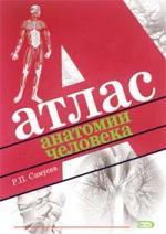 Атлас анатомии человека Справ. Издание