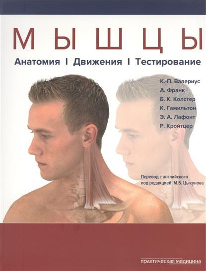 Мышцы: Анатомия. Движения. Тестирование