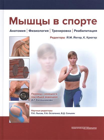 Мышцы в спорте: Анатомия. Физиология. Тренировка. Реабилитация