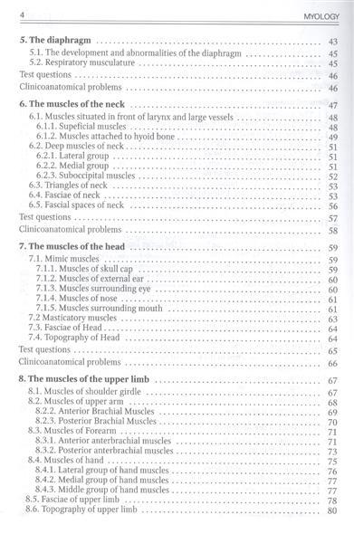 Myology. Миология. The manual for medical students. Учебное пособие для медицинских вузов (специальность